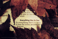 Everything Has It's Time (TayTayF) Tags: autumn fall love beautiful beauty season photography photo amazing cool interesting colorful photographer awesome jesus explore
