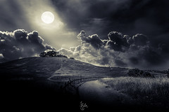 moon... (Rohit KC Photography) Tags: park trees sky blackandwhite field grass clouds canon fence shade nd moonlight rays hikingtrail 5dmarkii