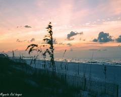 Sunrise (magnetic_red) Tags: beach water sunrise alabama seaoats bronicas2a ektar100