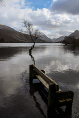 Put Your Feet Up (mlomax1) Tags: canoneos80d cymru eos80d llanberis snowdonia wales canon llynpadarn padarn water lake mountains snow bench tree flooded clouds sky dwrcymru