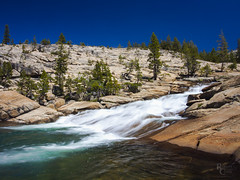 Contrast in the Yosemite High Country (RobertCross1 (off and on)) Tags: 1250mmf3563mzuiko ca california em5 highsierra omd olympus pct pacificcresttrail sierranevada sierras tuolumne tuolumneriver yosemite yosemitenationalpark bluesky forest landscape nature pine rapids trees water waterfall