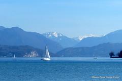 Et vogue sur le lac d'Annecy (MPRPJB) Tags: lac lacdannecy lake hautesavoie savoiemontblanc voilier savoy northernalps lacbleu bleu blue montagne mountain