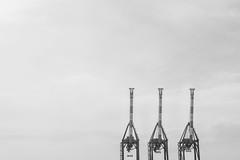 Il porto di Genova - Superbi. I genovesi e la loro città (Tiziano Caviglia) Tags: genova genoa genua gênes liguria ligurie ligurien superbiigenovesielalorocittà marligure mare sea port urbanphotography italiaphotomarathon genovaphotomarathon2017 italia italy italie italien gantrycranes cranes gru gruportuali containercranes
