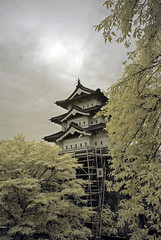 Hirosaki Castle Under Renovation (aeschylus18917) Tags: danielruyle aeschylus18917 danruyle druyle ダニエルルール japan 日本 infrared ir surreal 赤外線 aomoriprefecture 青森県 hirosaki 弘前市 hirosakicastle 弘前城 hirosakijō architecture 1685mm