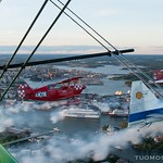ArcticEagles_TuomoSalonen.picures.fi thumbnail