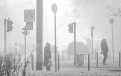 Stuck in fog (Lensjoy) Tags: lensjoy fog wintermorning cold bw posts pedestrians streetphoto