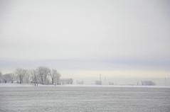 DSC_0574a (Fransois) Tags: fleuve river repentigny hiver winter québec monochrome eaux waters auloin faraway snow arbres trees silencieux silent