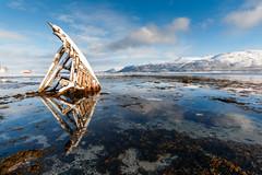 The Ship (edubartolome) Tags: 2017 escandinavia europa europe kvaløya norge noruega norway tisnes troms ship barco itsasontzi reflejo reflection