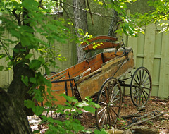 Aging Buckboard (DGS Photography) Tags: missouri branson silverdollarcity wagon buckboard decoration broken trees leaves aged