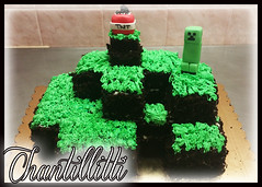 minecraft (Chantillitti) Tags: pdz panna