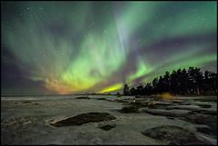 Norrskens natt (Jonas Thomén) Tags: norrsken aurora revontulet foxfire northernlights auroraborealis sea hav havet is ice rocks stenar skog forest träd trees sky himmel stars stjärnor winter vinter natt nights
