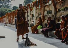 La escoba (Nebelkuss) Tags: india asia bihar bodhgaia bodhgaya monje monk budismo budista buddhism buddhist templo temple mahabodhi colores colours fujixt1 fujinonxf23f14