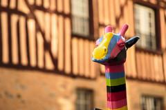 Fière (Amanda Hinault / MamzelAmanda) Tags: girafe rennes arcenciel rainbow street