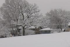 IMG_2818 (sjj62) Tags: s90 snow snowscape lith lakeinthehillsil winter winterscape