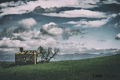 (lura photos) Tags: paisaje countryside landscape paysage cabane caseta cabaña hut tree mountains arbre montages arbol