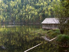 Toplitzsee P1050309 (martinfritzlar) Tags: toplitzsee ausseerland salzkammergut steiermark österreich alpen see wald austria alps laketoplitz lake forest