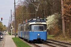 Ausfahrt an der Haltestelle Menterschwaige (Bild: Arno Schwab) (Frederik Buchleitner) Tags: 2005 3004 linie15 munich münchen pwagen strasenbahn streetcar tram trambahn