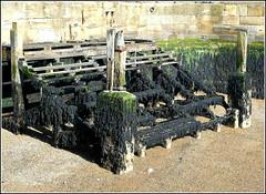 Old Landing Stage .. (** Janets Photos **) Tags: uk bridlington harbours landingstage decay seaweed pleasureboats