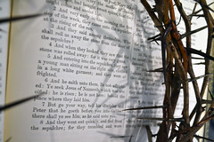 Crown of Thorns - Jesus of Nazareth (Brett Streutker) Tags: arabic bible jesus movie god father scriptures saved born again maranatha golgotha calvary church school study christ resurrection easter 2017 preacher teach theology seminary institute praise music revelation apocalypse mark beast antichrist 666 satan devil demon demonic baptist yahweh jehovah methodist lds christian yeshua noahs ark flood creation exorcism priest baptism convert abraham issac david king kings goliath galilee sea boat roman jews judah samaria widow