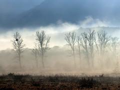 niebla en las sierras (marianodearriba) Tags: marianodearriba niebla sierras cordoba