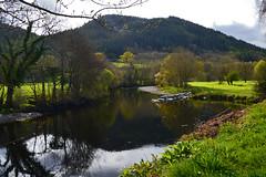 reflection (Lord Edam) Tags: river afon llugwy conwy wildlife morning water rocks fields