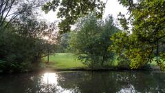 Brgerpark-Bremen (ralf_warnecke) Tags: deutschland wasser herbst bremen reflexion bume spiegelung deu gegenlicht brgerpark