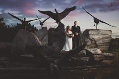 Laura & Shane // Wedding