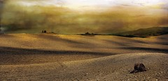 Terre di Siena (Rolando Cherubini (orlonda2008)) Tags: