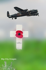Lancaster In Remembrance (Big_City_Images) Tags: red wild summer sky sun white plant flower macro green nature floral beautiful beauty field grass closeup illustration rural plane cutout garden painting season landscape one design spring fight flora war respect natural bright image symbol blossom outdoor drawing decorative background aviation decoration meadow petal single poppy bloom bouquet ww1 agriculture botany wildflower isolated papaver florescence lancasterbomber