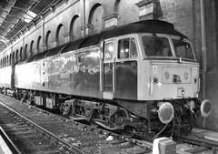 47839 (R~P~M) Tags: uk greatbritain england london train riviera diesel unitedkingdom railway locomotive 47 marylebone