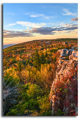More Autumn at Dolly Sods (Roger Photos) Tags: nef hdr dollysods