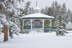 BANFF BANDSTAND (mark_rutley) Tags: winter snow canada september banff bandstand