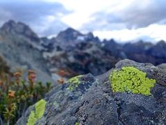 IMG_0283 (cpliler) Tags: hiking maplepassloop