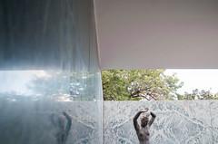 Mies (La T / Tiziana Nanni) Tags: barcelona travel reflection nikon miesvanderrohe riflessi architettura barcellona d300 lessismore iamyou tizianananni