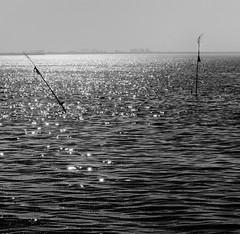Late summer Sea