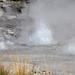 Rift Geyser eruption (11:41 AM-12:22 PM, 16 August 2014) 2