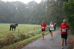IMG_5262 (De Herfstloop Twente) Tags: de running ac enschede twente hardlopen rudie 2014 boekelo lonneker fotograaf tion glanerbrug olthof usselo herfstloop