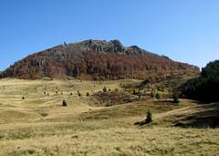 a Szekatúra / Secătura (debreczeniemoke) Tags: autumn mountains landscape hiking hegy transylvania transilvania mountaintop tájkép erdély ősz túra hegycsúcs szekatura canonpowershotsx20is gutinhegység munţiigutâi secătura munţiigutin