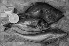 Fish from Wrights (fintanbrowne) Tags: bw stilllife fish dinner lemon mt seabream johndory redgrunyard
