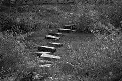 Crossing the river... (ndrg) Tags: oscar jimenez oscarjimenez óscarjiménez sot de chera sote sotdechera