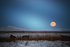 (i threw a guitar at him.) Tags: ocean winter sunset red sea dog moon mountain snow mountains cold west water alaska port circle island coast twilight bush side lagoon arctic chukchi 2014 kivalina