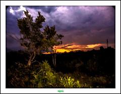 BALAZUC (régisa) Tags: sunset tree soleil coucher arbre balazuc ardche
