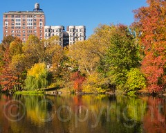 Foliage at The  Pool in Central Park, New York City (jag9889) Tags: park nyc newyorkcity autumn usa lake ny newyork reflection fall colors landscape pond unitedstates centralpark manhattan unitedstatesofamerica landmark foliage cp 2014 nycparks jag9889 20141110