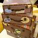 Suitcase shaped nesting storage boxes