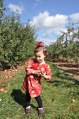 2014-10-18 10.57.08 (whiteknuckled) Tags: pumpkin lily farm homestead applepicking outing 2014 poolesville