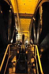 Cogwheels (PimGMX) Tags: heritage industrial engine steam polder stork steamengine stoom gemaal halfweg dampf industriekultur dampfmaschine industrieel industrieelerfgoed watermanagement stoomgemaal stoommachine