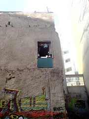 117889 (original.intent) Tags: life street city light urban sun bird art window wall grey graffiti colorful pattern break singing hole parking cement cage athens greece difference canary dull appartment monotony decadance oppose