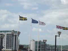 Cardiff Bay - flags (ell brown) Tags: greatbritain southwales wales unitedkingdom flag cymru cardiff flags caerdydd unionjack cardiffbay baecaerdydd britishflag ukflag europeanunionflag euflag southglamorgan cardiffflag capitalofwales
