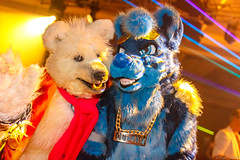 _MG_0639 (Tiger_Icecold) Tags: confuzzled cfz2016 cf2016 furcon furry convention fursuit birmingham party deaddog ddp deaddogparty