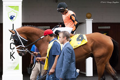 Cool Arrow (Casey Laughter) Tags: racehorse turfway thoroughbred horse horseracing horses winner loser fun racing racetrack race track saddlecloth tack gate taa